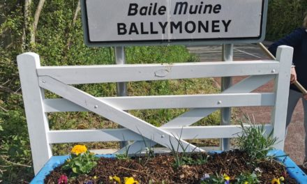 Fantastic new additions to Ballymoney village!