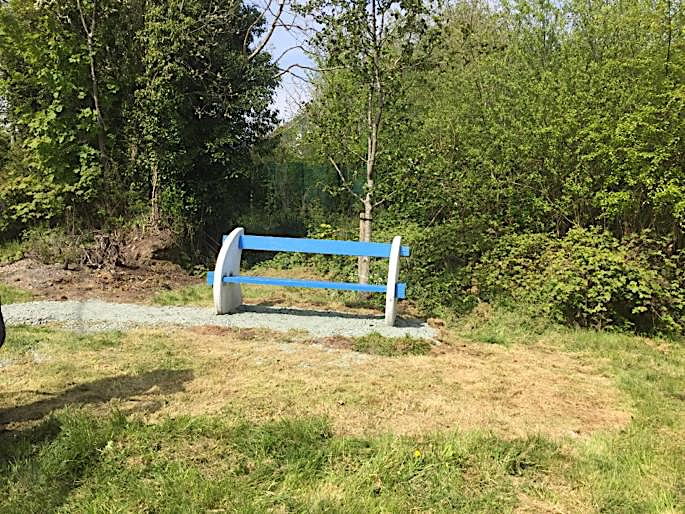 Local Mystery Story – Pat's Bench